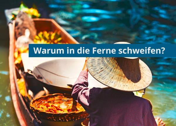 blog-ferne
